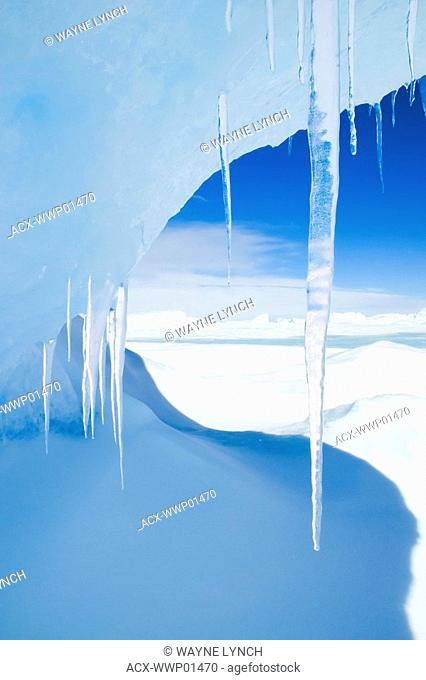Antarctic icicles, Snow Hill Island, Weddell Sea, Antarctica
