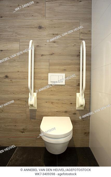 Inside disable toilet. toilet with grab bars for senior or a handicapped person,disable concept. modern design clean and new