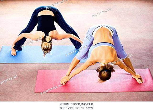 View of two women exercising