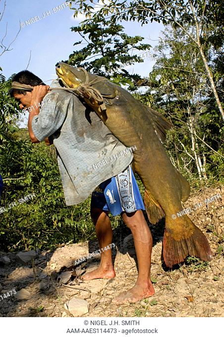 Fisherman carrying a zungaro (Zungaro zungaro) catfish caught with a handline in the Chumia rapids along the Huallaga River in the Andean foothills