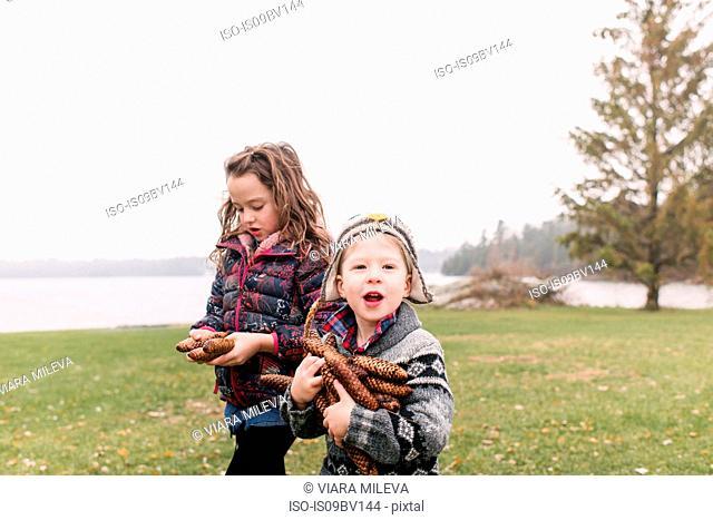 Siblings with armful of brown pine cones, Kingston, Ontario, Canada