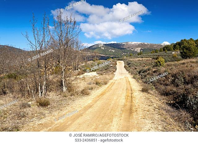 Cañada Real Segoviana in Bustarviejo. Madrid. Spain. Europe