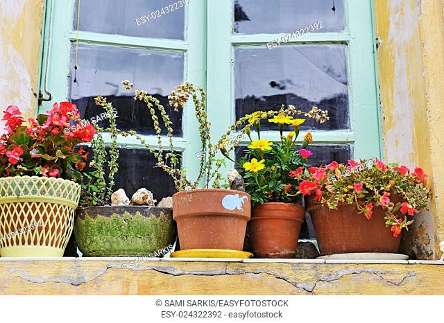 Flowers in plant pots on a windowsill in a French village, France, Europe