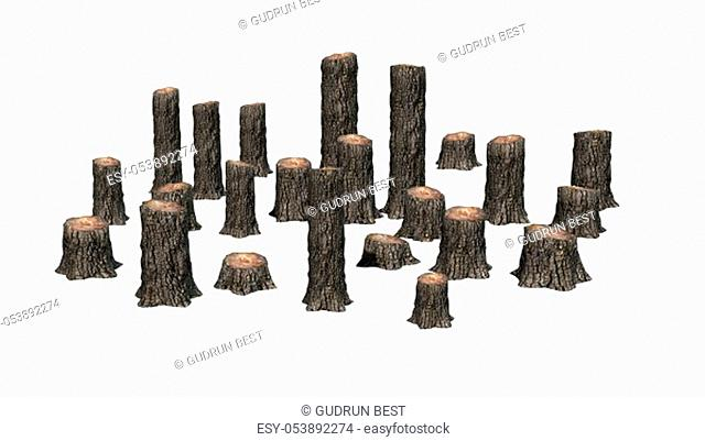 many several tree stumps - isolated on white background - 3D illustration