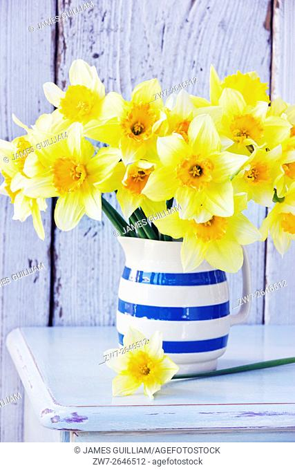Daffodils in ceramic jug