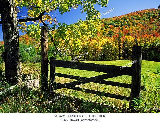 USA, Vermont, East Orange, Autumn scene with fence, pasture and forest in background