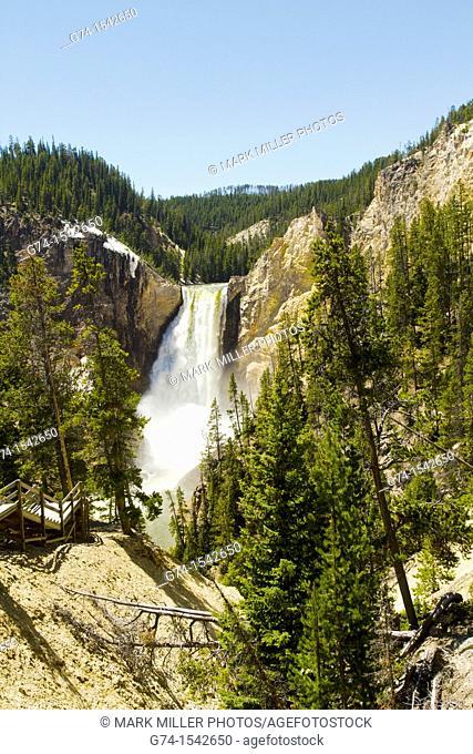 Lower Falls Yellowstone River Yellowstone National Park Wyoming USA