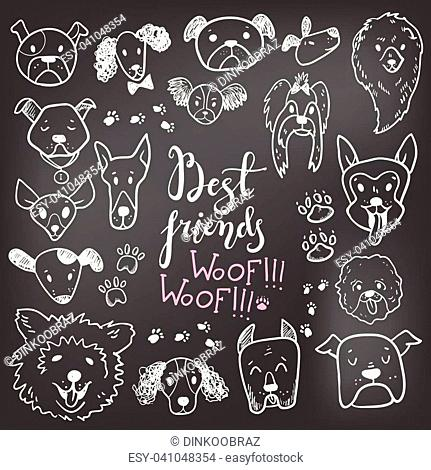 Funny doodle dog icons collection on the chalk board. Hand drawn pet, kid drawn design. Cute modern elegant style, different breeds