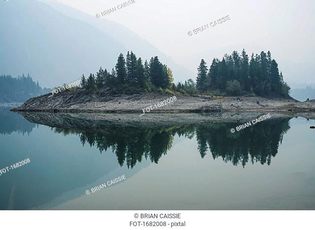 Trees on field reflecting on calm lake in foggy weather, Whistler, British Columbia, Canada