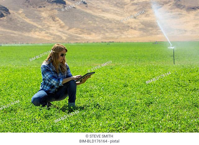 Caucasian farmer using digital tablet in field