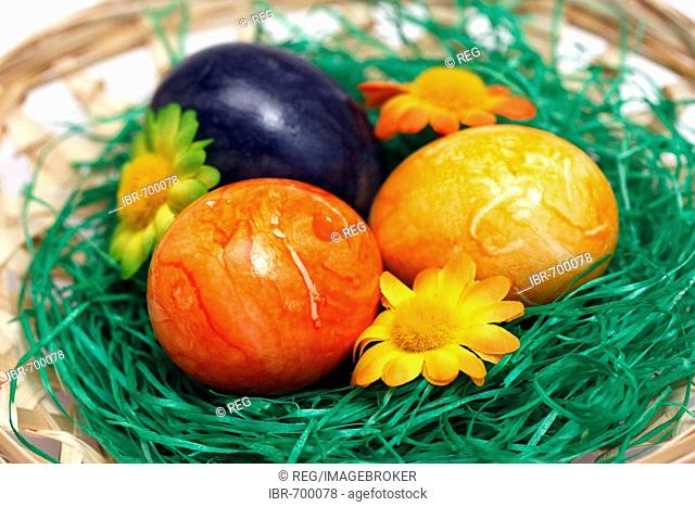 Painted Easter eggs in basket with decorative flowers