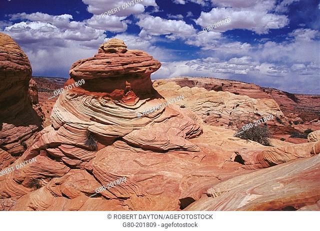 Paria Canyon-Vermilion Cliffs Wilderness. Arizona. USA