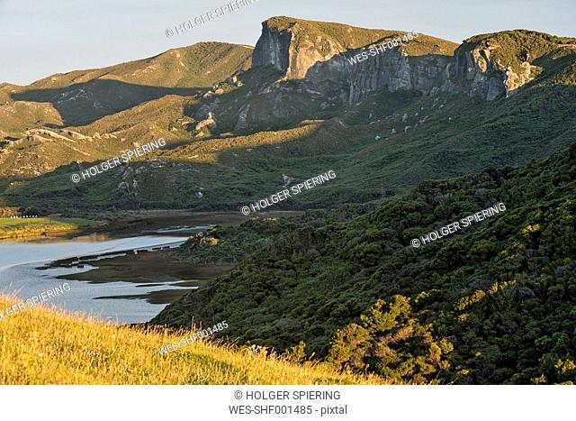 New Zealand, Tasman, Golden Bay, Puponga, cliffs and native bush in the Puponga hills near Cape Farewell