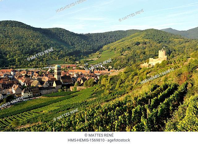 France, Haut Rhin, Alsace Wine Route, Kaysersberg, the vineyard, Sainte Croix church and the keep of the castle