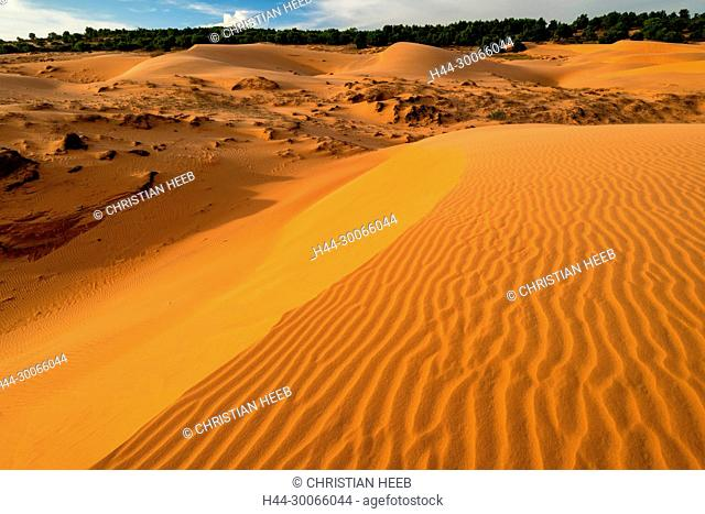 Asia, Asian, Southeast Asia, Vietnam, Southern, Binh Thuan Province, Phan Thiet, red sand dune