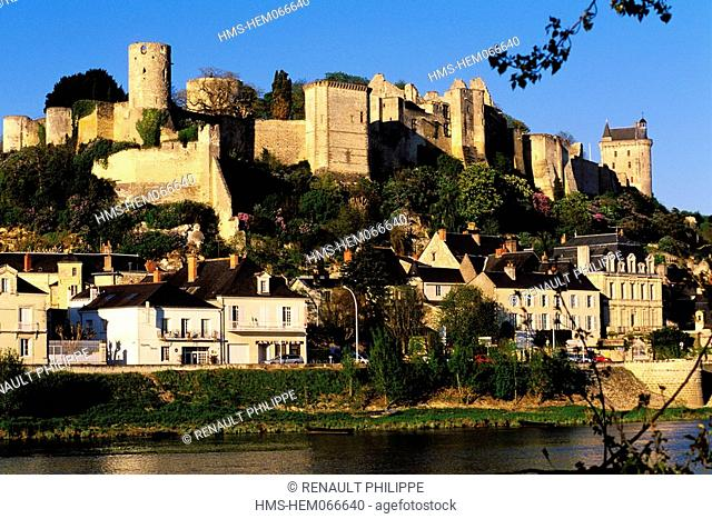 France, Indre et Loire, Chinon, the Vienne River and the Town dominated by the Castle and the Ramparts