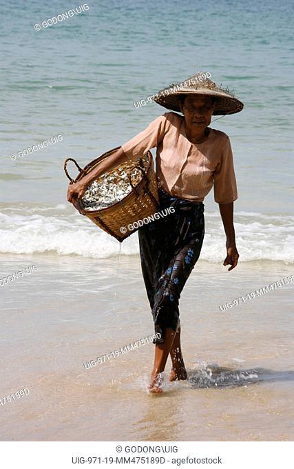 Woman carrying fish, Ngapali, Myanmar