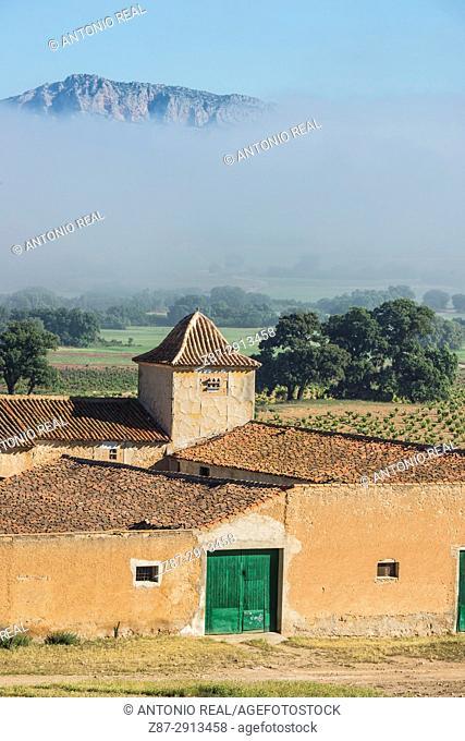 Paraje de Botas y el Mugrón, Almansa, Albacete, Castile-La Mancha, Spain
