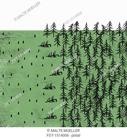 View of deforestation against white background