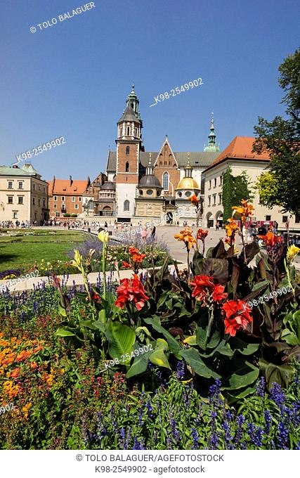 Catedral de Wawel, santuario nacional polaco, Kraków, Poland, Eastern Europe