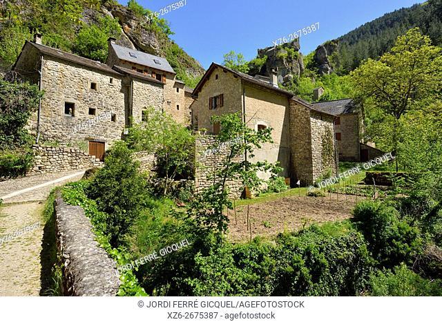 Castelbouc, Sainte-Enimie, in les Gorges du Tarn, Lozère 48, région Languedoc-Roussillon-Midi-Pyrénées, France, Europe
