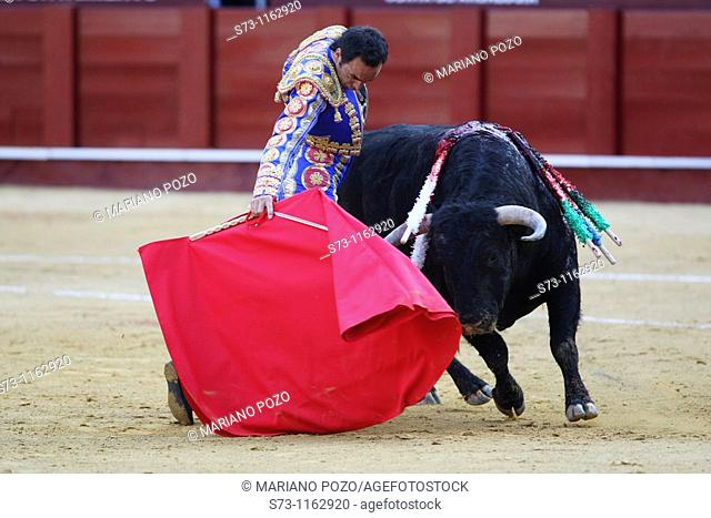 Bullfighter El Cid in La Malagueta, Málaga, Andalusia, Spain