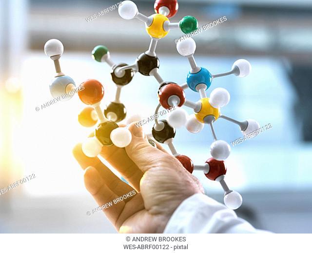 Scientist holding a molecular model