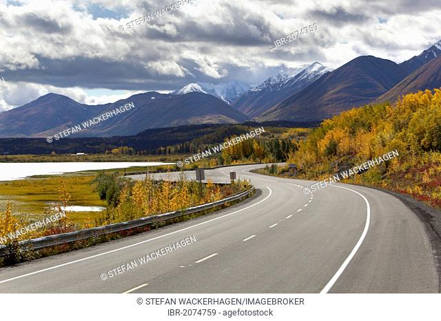 Indian Summer, autumn along Dezadeash Lake, Haines Road, towards Haines Pass, Alaska, leaves in fall colours, St. Elias Mountains