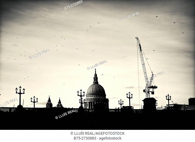 Silhouette of the Southwark Bridge with lampposts. Crane and St. Paul's dome in the background. Birds flying. London, England
