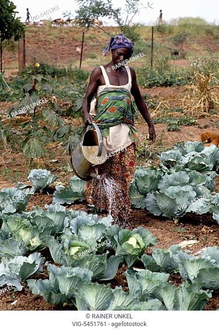 BURKINA FASO, KAYA, 20.09.1990, BFA, Burkina Faso : In Centre-Nord province a young woman is watering the vegetable garden of her village