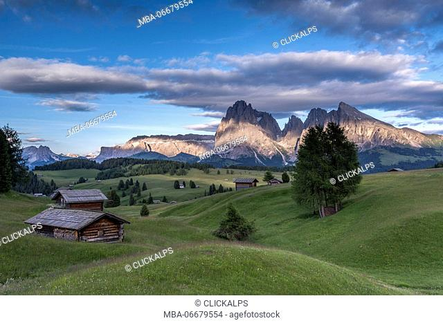 Alpe di Siusi/Seiser Alm, Dolomites, South Tyrol, Italy. The last rays of sun at the Alpe di Siusi/Seiser Alm. In the background the peaks of Sella