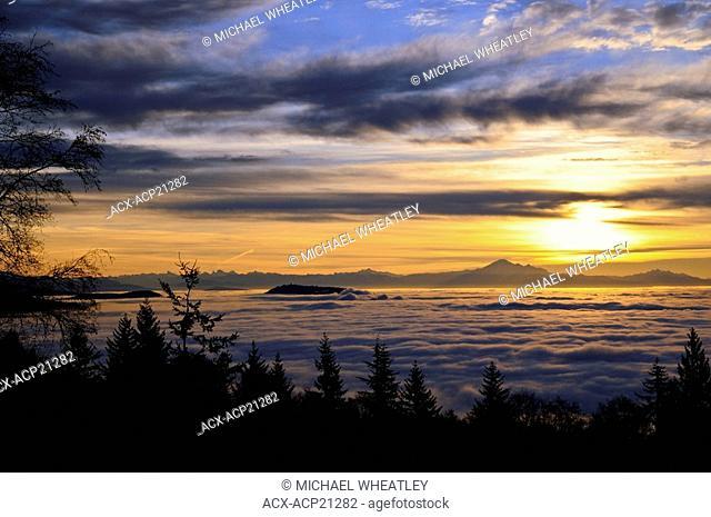 Burnaby Mountain pokes through fog that engulfs Metro Vancouver