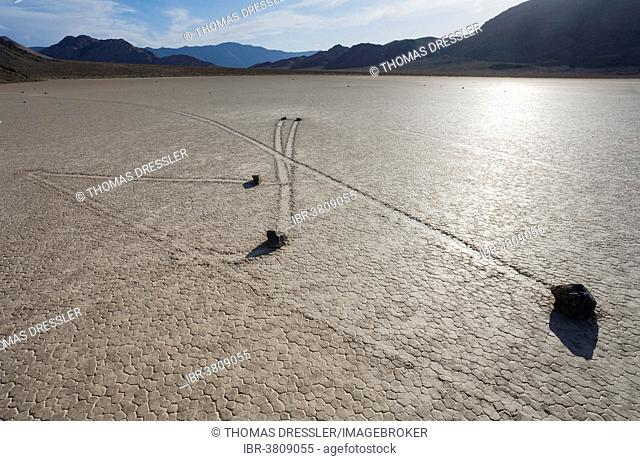 Tracks created by the mysterious moving rocks at the Racetrack, a dry lakebed or playa, Death Valley, Death Valley National Park, California, USA