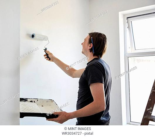 A painter and decorator using a paint roller and holding a paint tray, decorating a room
