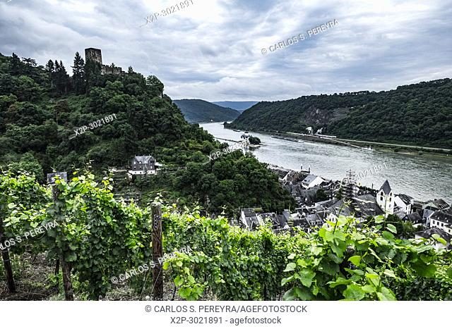 Gutenfels Castle near Kaub, Rhineland-Palatinate, Germany, Europe