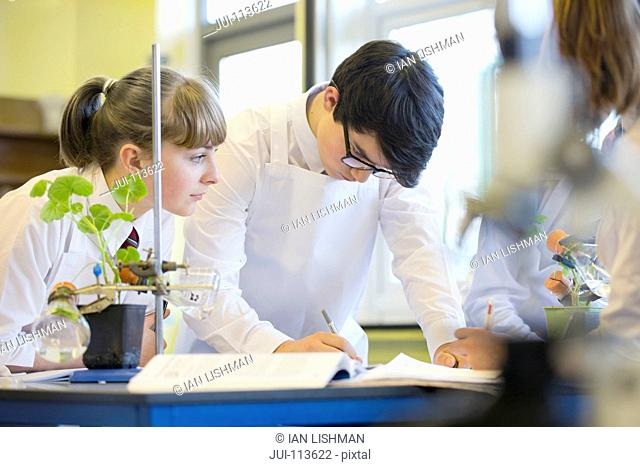 High school students conducting scientific experiment in biology class