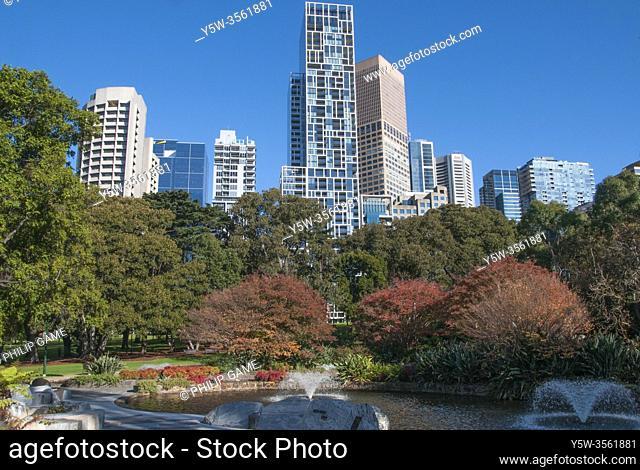 CBD skyline from Treasury Gardens, Melbourne, Australia