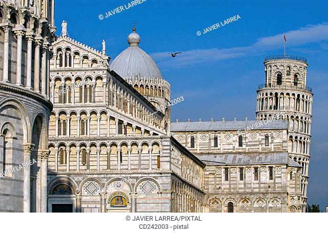 Piazza dei Miracoli. Pisa. Tuscany, Italy