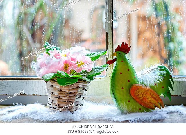 Rain on a window. In the foreground a flowering primrose in a basket and a decorative cock. Germany