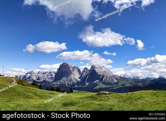 Seiser Alm (Alpe di Siusi). Valgardena Italy. Panorama view with the Sassolungo mountain peak