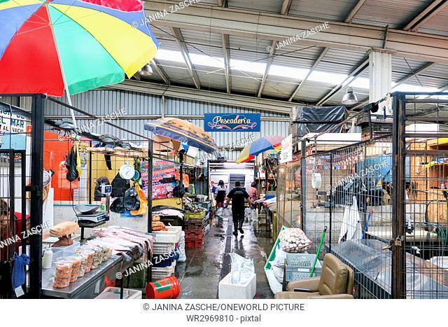 Chile, X Región, Chiloe, Market Hall in Castro on Chiloé