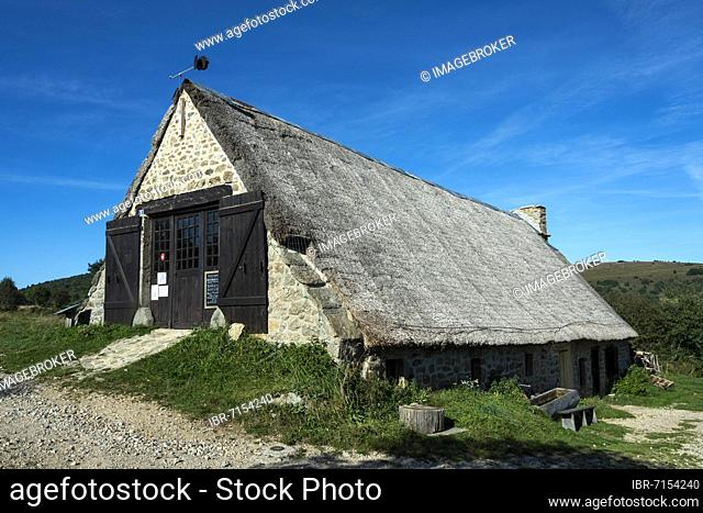 The jasserie of Coq Noir associative place of discovery of Haut Forez at the Col des Supeyres, Livradois-Forez regional natural park, Puy de dome department