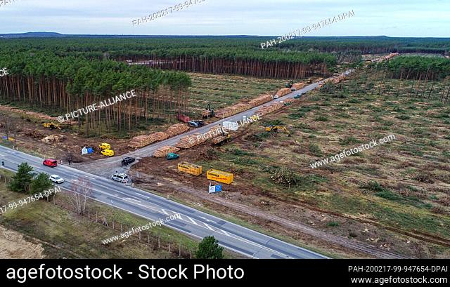 17 February 2020, Brandenburg, Grünheide: View of the already partly cleared forest area on the future site of the Tesla Gigafactory (aerial photo with a drone)