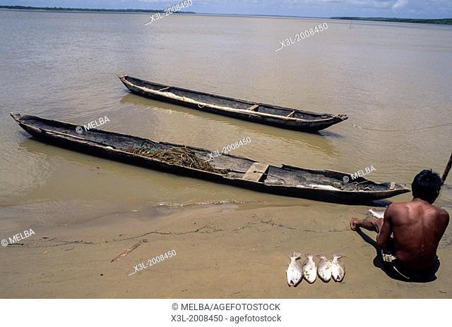 Fisherman. Orinoco Delta. Venezuela