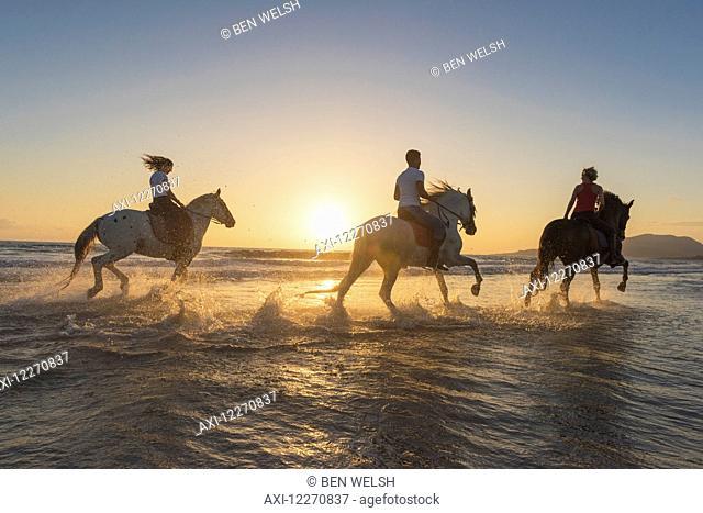 Horseback riding in the shallow water at sunset; Tarifa, Cadiz, Andalusia, Spain