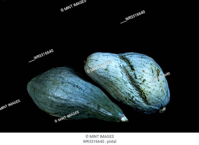 Close up of two blue pumpkins on black background