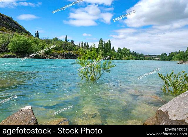 Beautiful turquoise water of Clutha River flowing between diminishing perspective of willow covered river banks at Clyde
