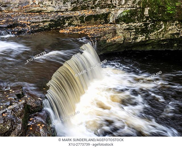 Stainforth Force or Stainforth Foss on the River Ribble in Autumn Stainforth Ribblesdale Yorkshire Dales England