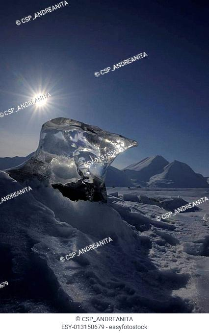 Piece of ice sticking out of sea ice
