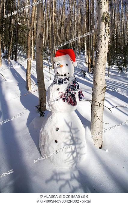 Snowman in santa hat & scarf deep in birch forest interior Alaska Winter